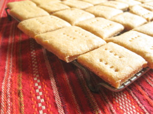 This is one of our favorite unleavened bread recipes. It's so easy and turns out perfectly every time.